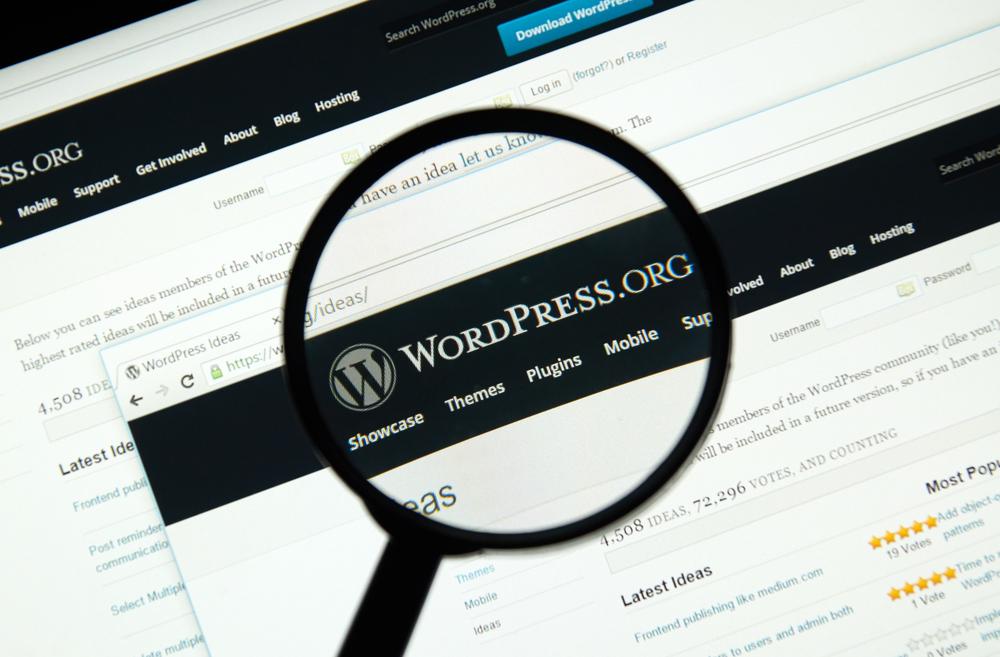 wordpress website development -digics.com.pk