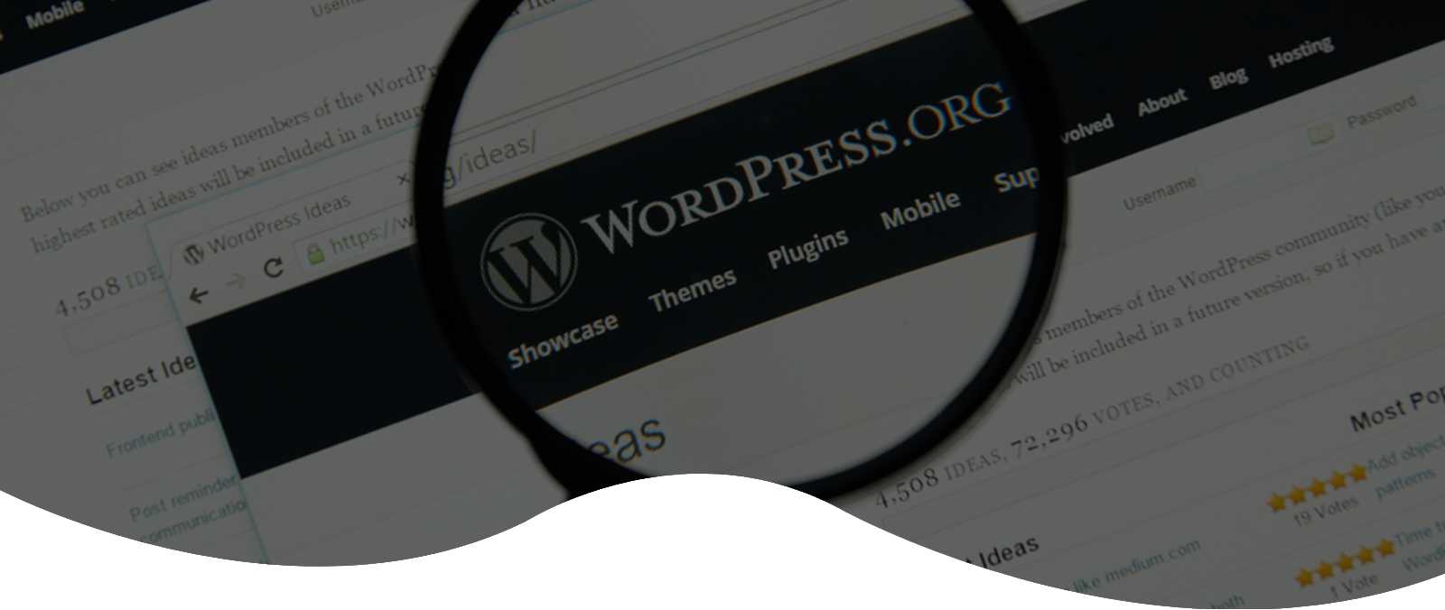 wordpress-website-development-services-by-digics-pvt-ltd